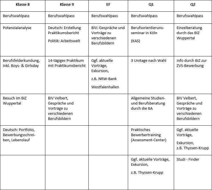 Prozess der Schulklassen in der schulischen Berufs- und Studienorientierung